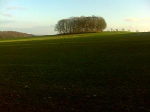 gps wandeling bij Rheden